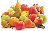Jabučasto voće